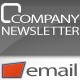 Company Newsletter - Email Template - ThemeForest Item for Sale