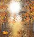 Autumn halloween background with owl and pumpkin - PhotoDune Item for Sale
