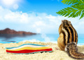 Chipmunk on beach, vacation concept - PhotoDune Item for Sale