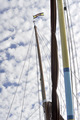 Ships rigging and flag - PhotoDune Item for Sale