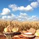 Bread and Grain - PhotoDune Item for Sale
