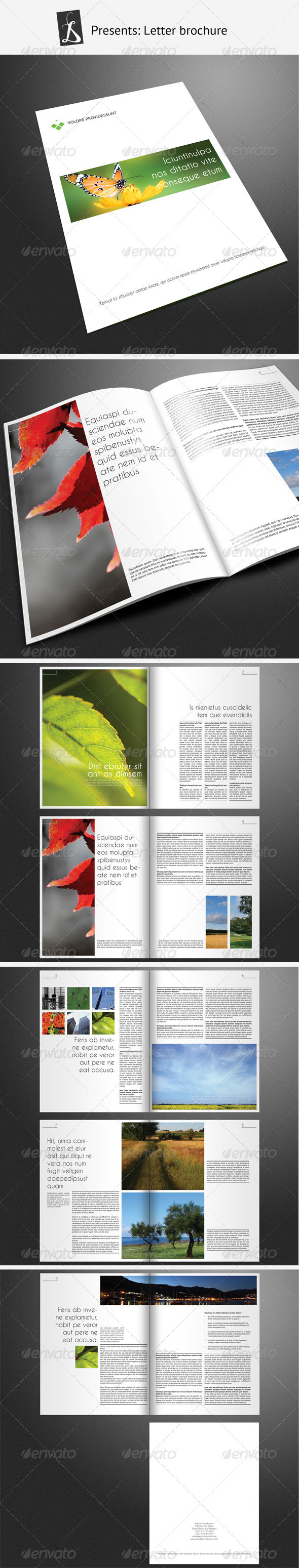 Corporate Brochure 11