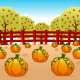 Pumpkin Field - GraphicRiver Item for Sale