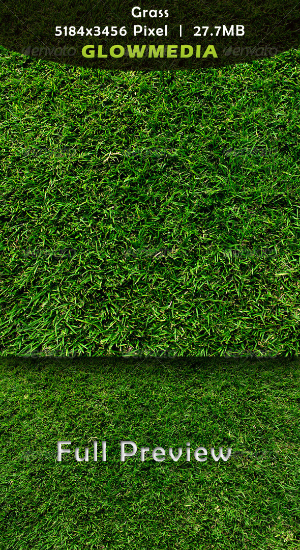 GraphicRiver Grass 2986077