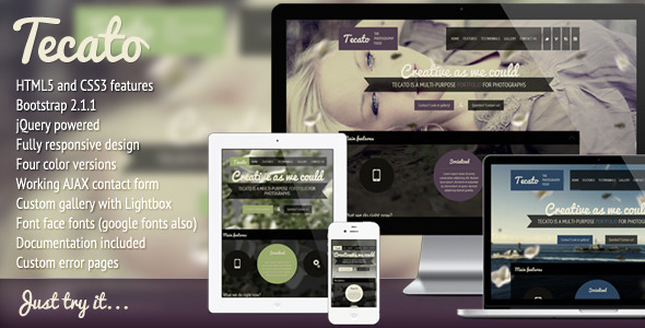 ThemeForest Tecato Creative HTML5 one page portfolio 3001327