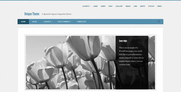 Unique - A New Customizable Premium WordPress Magazine Theme