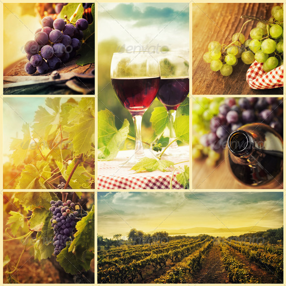 Wine collage - Stock Photo - Images