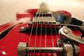 Guitar Bridge - PhotoDune Item for Sale