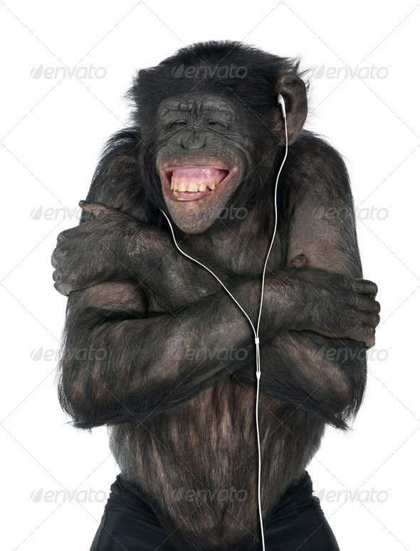 Monkey listening music - Stock Photo - Images