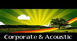 Collection of corporate feel good music, acoustic guitar, smooth piano, motivational melodies, and uptempo drum beats.