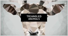 Triangled Animal Portraits