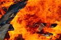 Bonfire Flames - PhotoDune Item for Sale