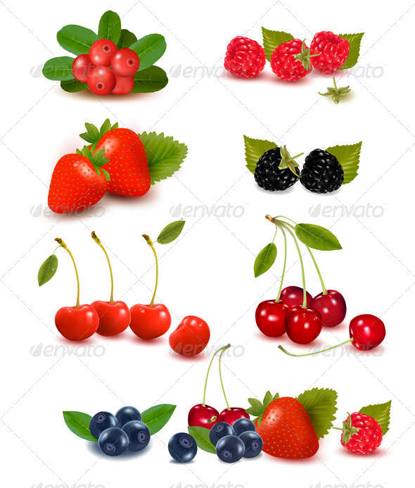 GraphicRiver Big group of fresh berries Vector illustration 3017727