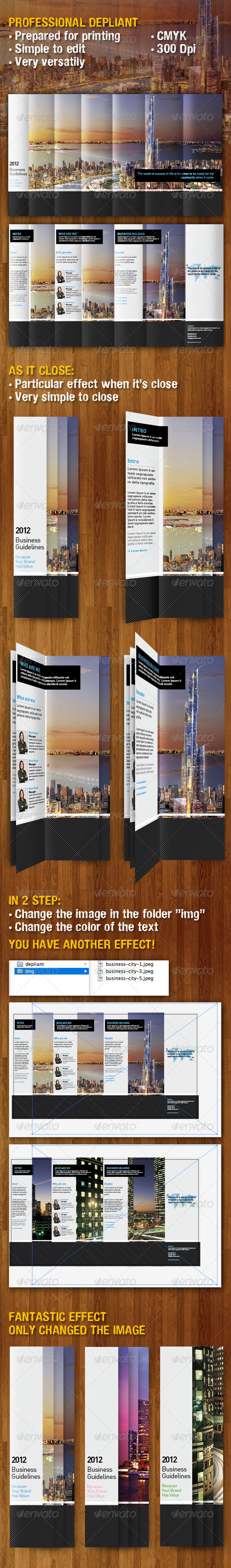 PROFESSIONAL DEPLIANT TEMPLATE - Informational Brochures