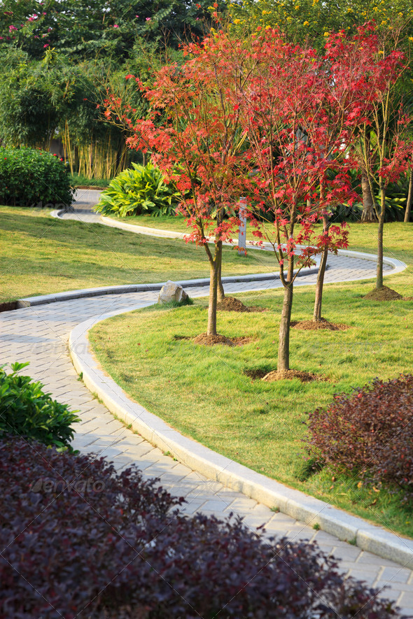 The brick footpath winding its way through a tranquil garden. - Stock Photo - Images