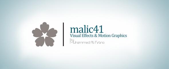 malic41