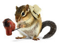 Funny chipmunk cowboy with stick horse - PhotoDune Item for Sale
