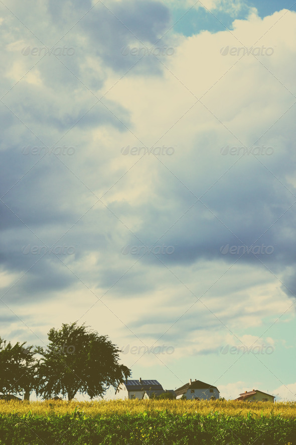 Nature Landscape - Stock Photo - Images