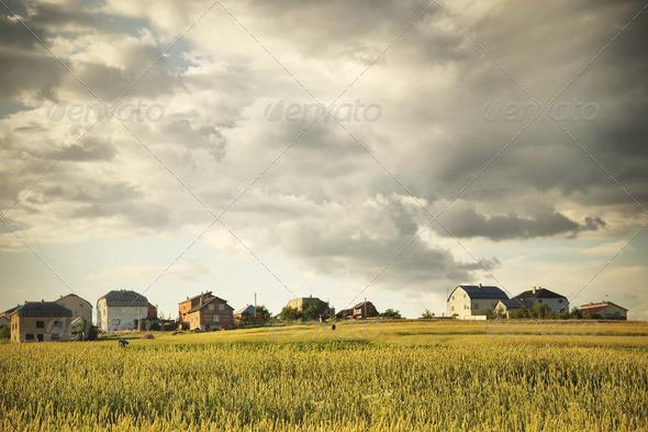 Nature background - Stock Photo - Images