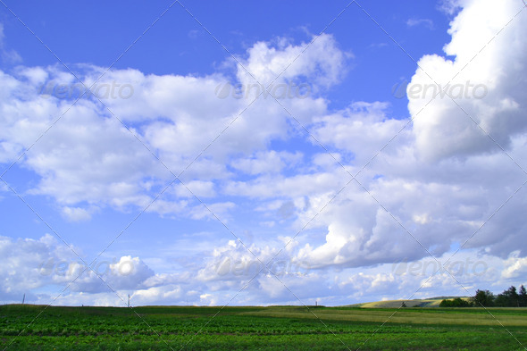 Landscape grass sky - Stock Photo - Images