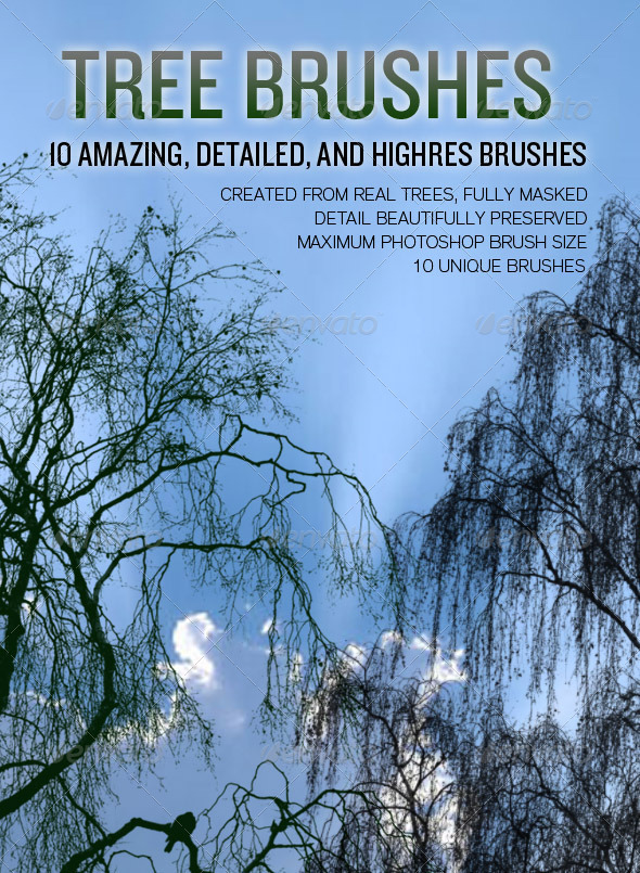 10 High Resolution Tree Brushes - Flourishes Brushes