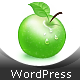 StratoSfera - Responsive WordPress Theme - ThemeForest Item for Sale