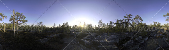 Nature HDRI - Midsummer Rock - 3DOcean Item for Sale