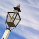 Period Lamp Post - PhotoDune Item for Sale