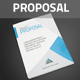 Corporate Proposal + Contract + Invoince - GraphicRiver Item for Sale