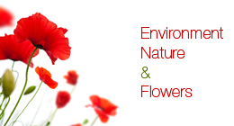 Environment, nature and flowers