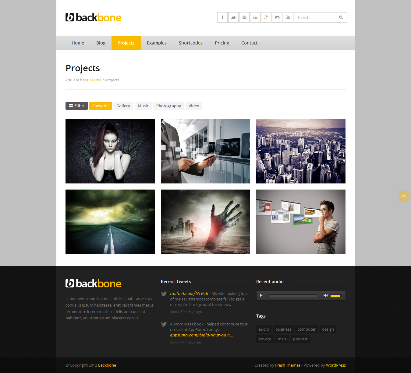 Backbone - Responsive Business WordPress Theme
