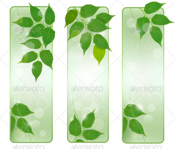 Three nature banners with green fresh leaves - Flowers & Plants Nature