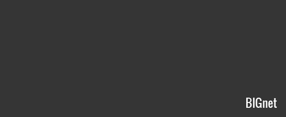 Bignet-profile-image