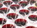 Wine Catering - PhotoDune Item for Sale