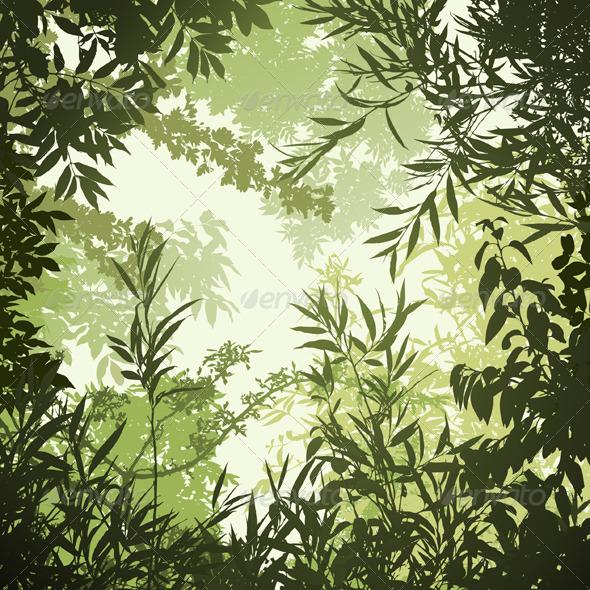 Floral Background - Flowers & Plants Nature
