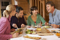 Group Of Friends Enjoying Meal In Alpine Chalet Together - PhotoDune Item for Sale