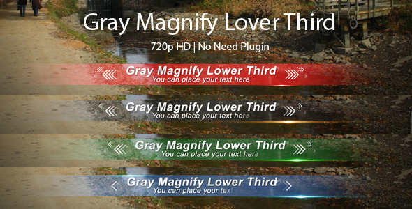VideoHive Gray Magnify Lower Third 3029036