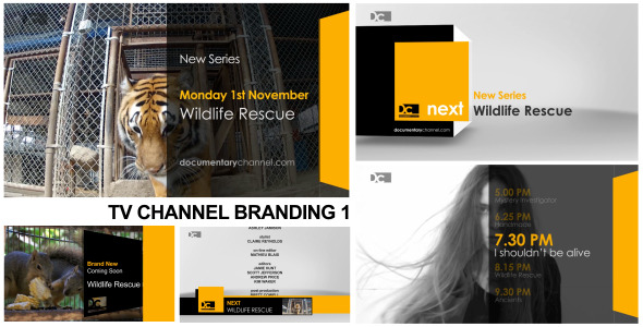 VideoHive Broadcast Design TV Channel Branding 1 3073188