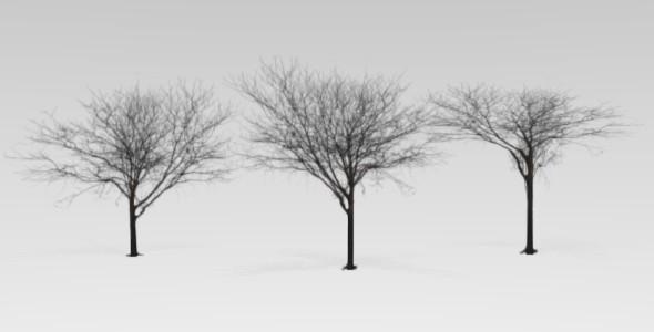 3DOcean Blender low polly tree 3079888