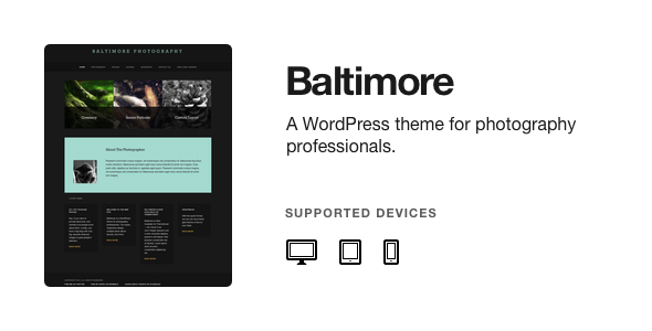 ThemeForest Baltimore WordPress Photography Theme 3061096