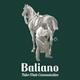 Baliano