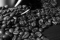 Coffee beans close-up 4 - PhotoDune Item for Sale