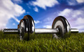 Dumbell and green grass