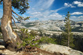 Panoramic view of Yosemite national park - PhotoDune Item for Sale