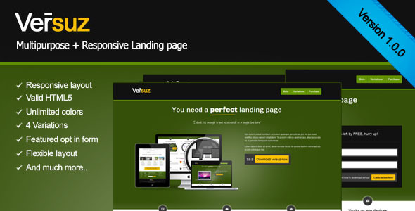 Versuz responsive landing page that convert