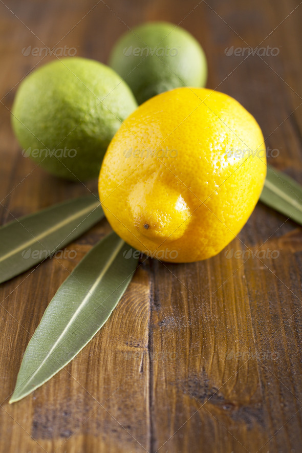 Lemon and Limes - Stock Photo - Images