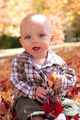 Smiling blue eyed baby playing in autumn leaves - PhotoDune Item for Sale