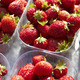 Containers Of Fresh Strawberries On Market Stall - PhotoDune Item for Sale