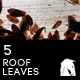 5 Hi-Res Translucent Roof With Dried Leaves - GraphicRiver Item for Sale