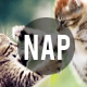 NAP - New Action Pack  - GraphicRiver Item for Sale